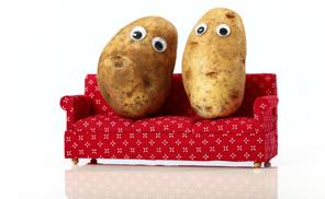 couch_potato_portfolio2_296